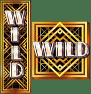 wild символы