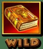 книга ацтеков wild символ